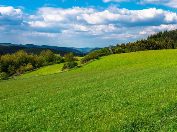 Die Eifel ist ein begehrtes Klassenfahrt Ziel.