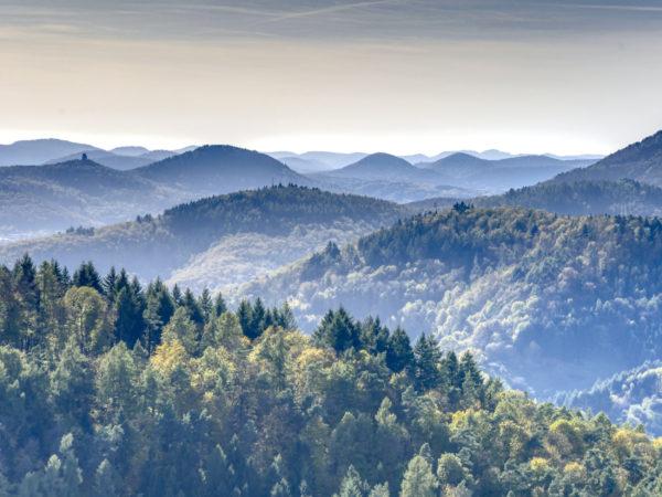 Die Pfalz ist der ideale Schauplatz für unsere erlebnispädagogischen Klassenfahrten.