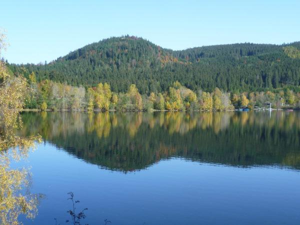 Klassenfahrt Ziele wie der Schluchsee sind sehr beliebt, da man hier einen Flossbau machen kann.