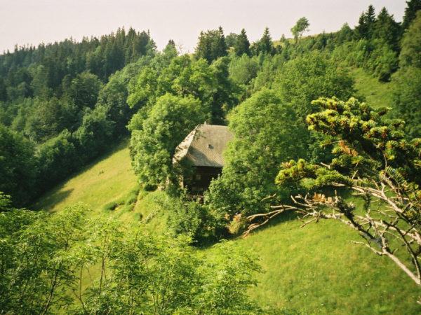 Der Schwarzwald ist am beliebtesten unter unseren Klassenfahrt Zielen.
