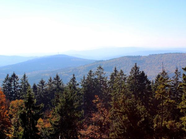 Der Taunus, mit seinen Wäldern und Wiesen, ist ein ideales Klassenfahrt Ziel.