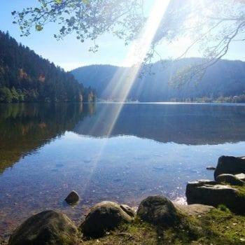 Wir fahren an den Lac de Longmer, wo wunderschöne Natur auf uns wartet.