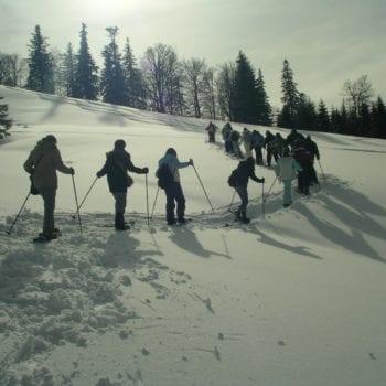 Auch Wandern wird zu einem einmaligen Erlebnis im Schnee!