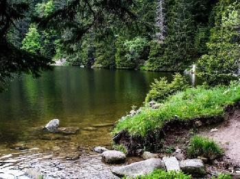 Wir erkunden gemeinsam das umliegende Gebiet des Karwendel.