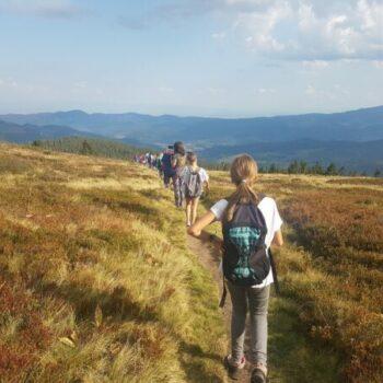Das Jura bietet idyllische Landschaften, die auf unseren Trekkingtouren erkundet werden wollen.