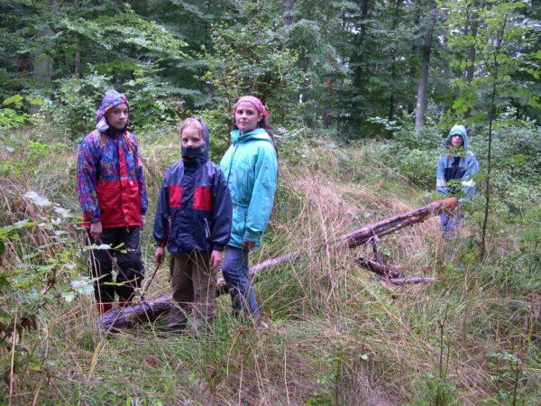 Im Unterholz wird hart gearbeitet. Das gibt ein großes Lagerfeuer!