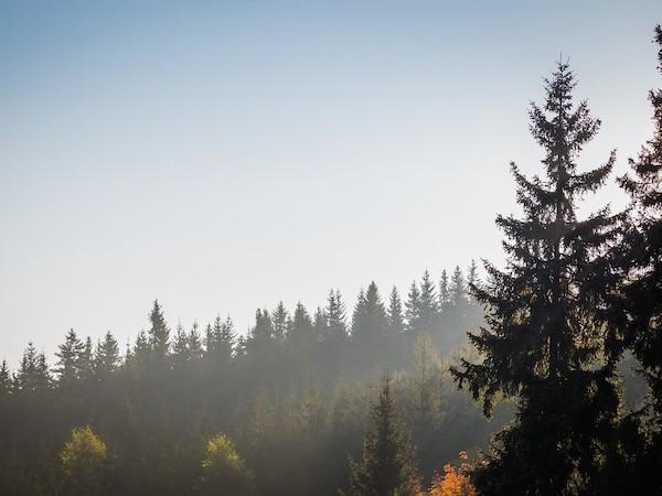 Auf geht's zur Klassenfahrt ins Erzgebirge!