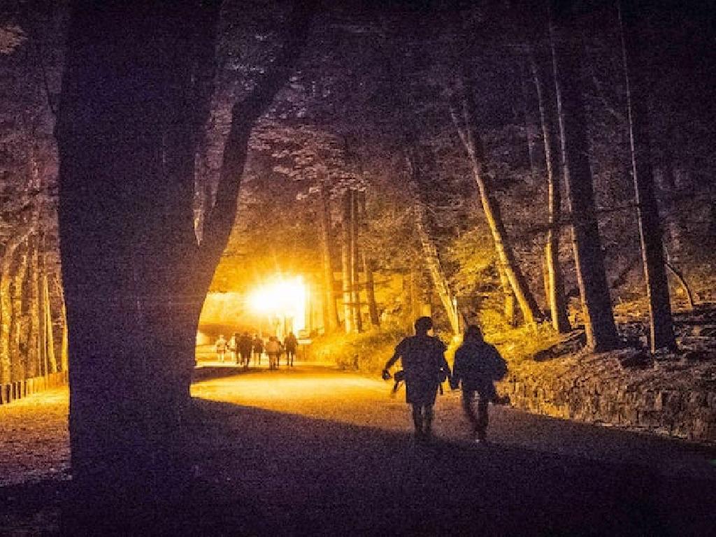 Paarwanderung bei Nacht