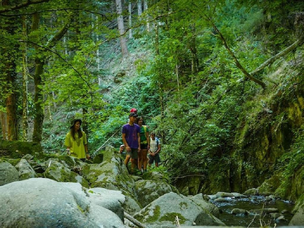 Bachwandern bei der Paarwanderung