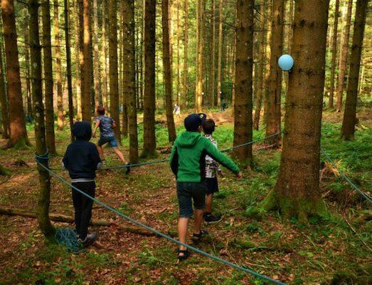 Bei unseren Ausflügen gehen wir auch mal in den Wald!