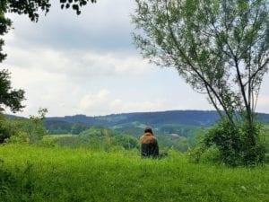 into the wild bringt Sie zurück zur Natur