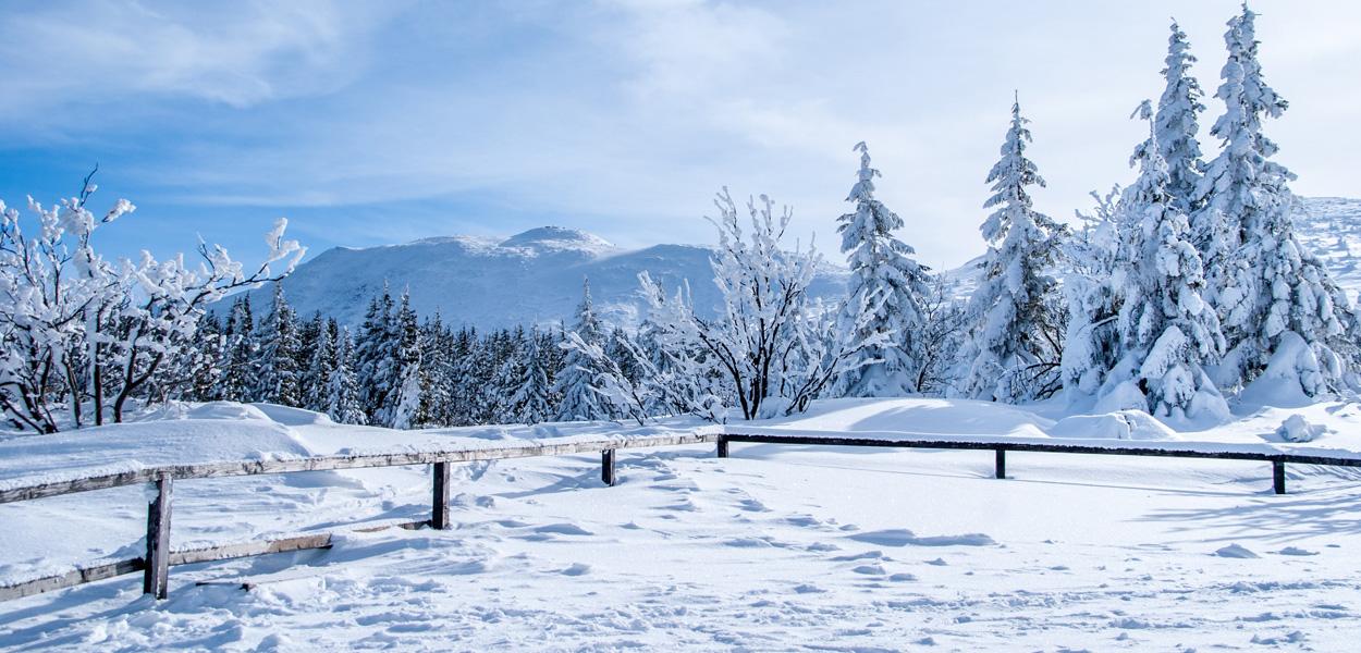 Winterklassenfahrten im Schwarzwald